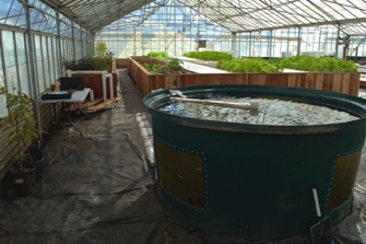 Aquaponics trainings