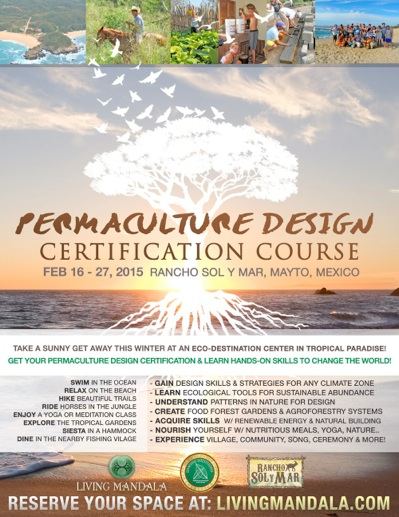 Permaculture Design Certification Course Mexico 2015